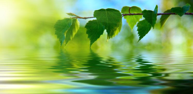 eau de surface