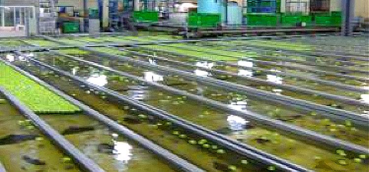 recyclage des eaux industrielles