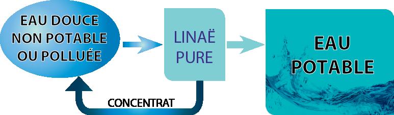 Linaë Pure : potabilisation de l'eau